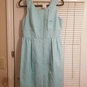 Robbins egg blue dress, J. Crew